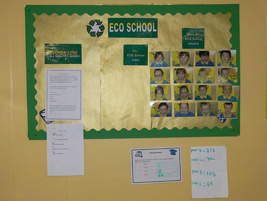 how to build a school eco team